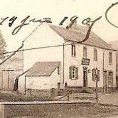 Zoom - 1901